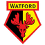 Watford transfer news